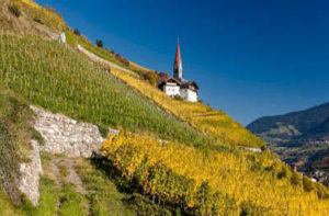 Vigneti nell'Alto Adige